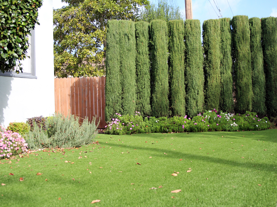 Fake Grass South Mountain Texas Landscape Front Yard