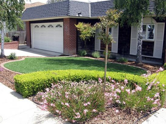 Artificial Grass Photos: Artificial Grass Ames Texas Lawn  Front Yard