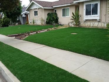 Artificial Grass Photos: Artificial Grass Bulverde Texas Lawn  Front Yard