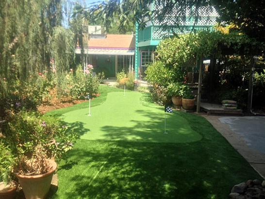 Artificial Grass Photos: Artificial Grass Fayetteville Texas  Landscape