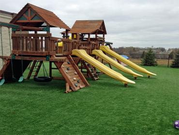 Artificial Grass Hornsby Bend Texas  Kids Safe  Commercial artificial grass