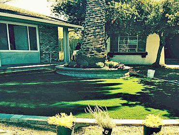Artificial Grass Photos: Artificial Grass Lexington Texas  Landscape  Front Yard