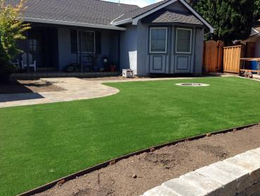 Artificial Grass Photos: Artificial Grass Round Rock Texas  Landscape  Front Yard