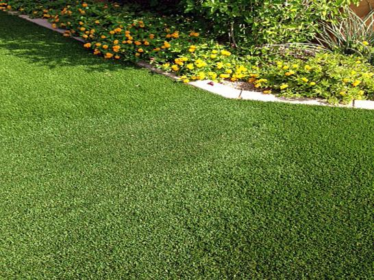 Artificial Grass Photos: Artificial Grass Scenic Oaks Texas  Landscape  Front Yard