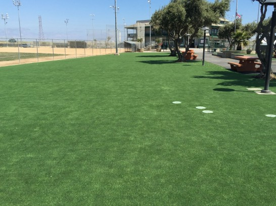 Artificial Grass Photos: Artificial Grass Simonton, Texas Landscape Ideas, Recreational Areas