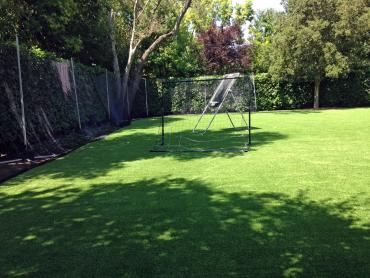 Artificial Grass Photos: Artificial Grass Sports Applications Canyon Lake Texas  Back