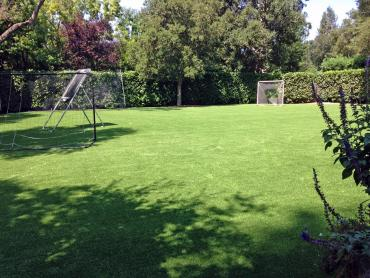 Artificial Grass Photos: Artificial Grass Sports Fields Camp Swift Texas  Back Yard