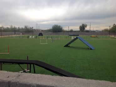 Artificial Grass Photos: Artificial Grass Sports Fields Sparks Texas  Recreational