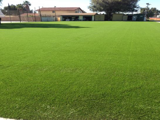 Artificial Grass Photos: Artificial Grass Sports Fields Troy Texas  Parks