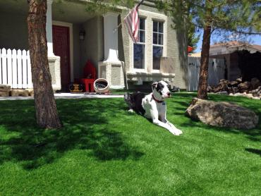 Artificial Grass Photos: Artificial Pet Grass Smithville Texas Installation  Dogs