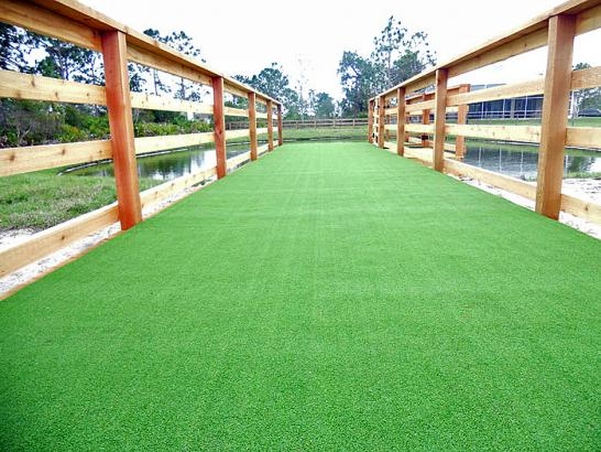 Artificial Grass Photos: Artificial Pet Grass Temple Texas Installation  Commercial