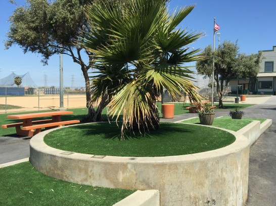 Artificial Grass Photos: Artificial Turf Installation Inez, Texas, Commercial Landscape
