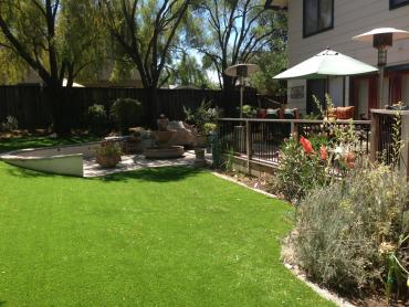 Artificial Grass Photos: Artificial Turf Leander Texas  Landscape  Back Yard