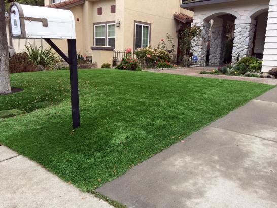 Artificial Grass Photos: Artificial Turf Lometa Texas Lawn  Front Yard