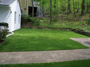 Artificial Turf Marble Falls Texas Lawn  Front Yard artificial grass