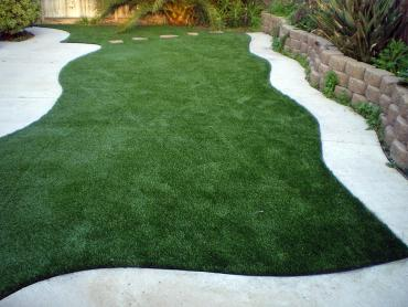 Artificial Grass Photos: Artificial Turf Marion Texas Lawn  Back Yard
