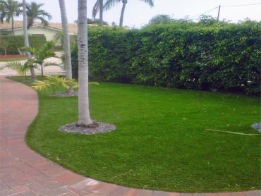 Artificial Grass Photos: Artificial Turf Martindale Texas Lawn  Front Yard