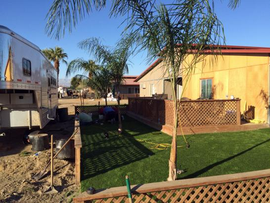 Artificial Grass Photos: Artificial Turf Shiner Texas  Landscape  Back Yard