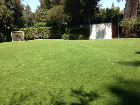 Artificial Grass Photos: Artificial Turf Sports Applications Milano Texas  Back Yard