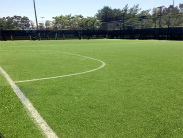 Artificial Turf Sports Applications Rollingwood Texas artificial grass