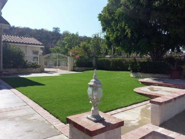 Artificial Turf Wimberley Texas  Landscape  Front Yard artificial grass