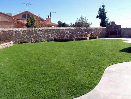 Artificial Grass Photos: Artificial Turf Yoakum Texas  Landscape  Back Yard