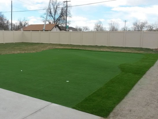 Artificial Grass Photos: Best Artificial Grass Leming, Texas Best Indoor Putting Green, Backyard Design