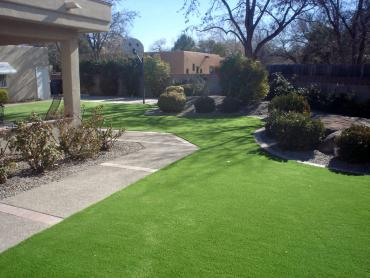 Artificial Grass Photos: Fake Grass Bee Cave Texas  Landscape  Front Yard