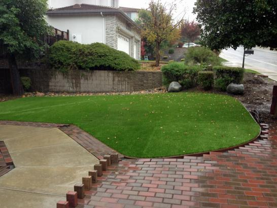 Artificial Grass Photos: Fake Grass Carmine Texas Lawn  Back Yard