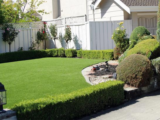 Artificial Grass Photos: Fake Grass Grey Forest Texas Lawn  Front Yard