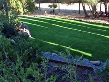 Artificial Grass Photos: Fake Grass Holland Texas  Landscape  Back Yard