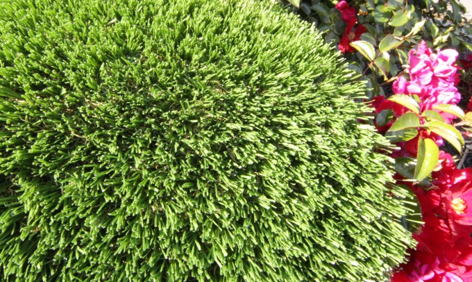 Hollow Blade-73 fake-grass Artificial Grass Austin Texas