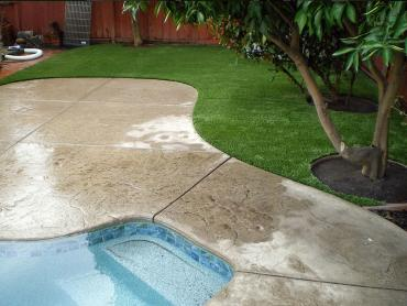 Artificial Grass Photos: Fake Grass Hudson Bend Texas Lawn   Summer Pools Pavers Back