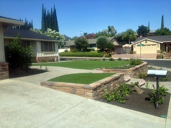 Artificial Grass Photos: Fake Grass La Vernia Texas  Landscape  Front Yard