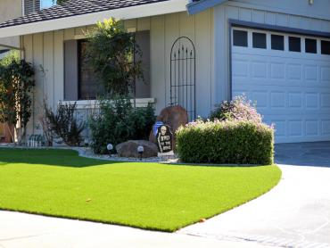Artificial Grass Photos: Fake Grass Selma Texas Lawn  Front Yard