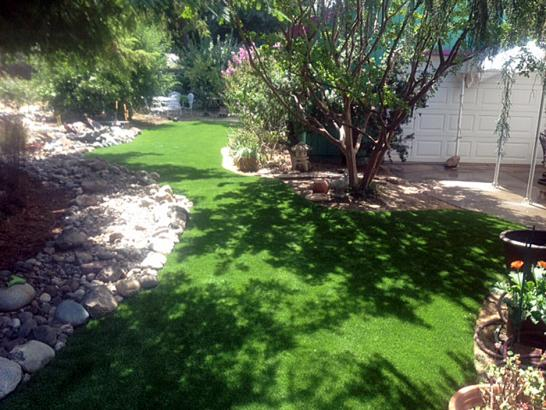 Artificial Grass Photos: Fake Grass Shavano Park Texas Lawn  Back Yard
