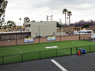 Artificial Grass Photos: Fake Grass Sports Fields Bear Creek Texas  Commercial Landscape