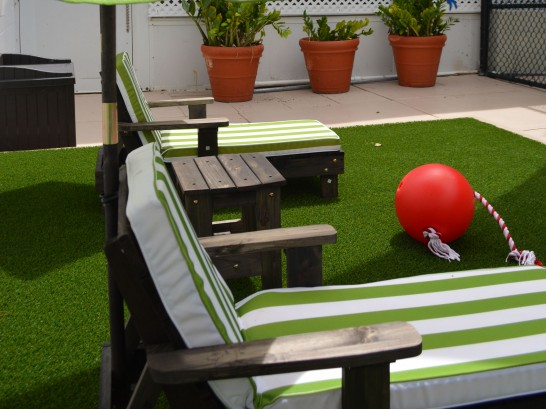 Artificial Grass Photos: Fake Grass Waelder, Texas Roof Top, Veranda