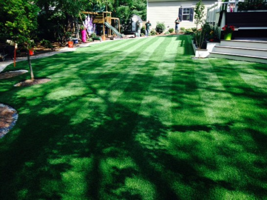 Artificial Grass Photos: Fake Lawn East Bernard, Texas Landscape Ideas, Small Backyard Ideas