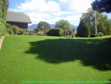 Artificial Grass Photos: Fake Pet Grass Sunset Valley Texas Installation  Back Yard