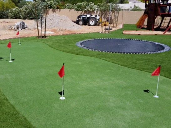 Artificial Grass Photos: Fake Turf Charlotte, Texas Putting Green, Backyard Designs
