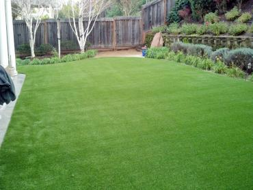 Artificial Grass Photos: Fake Turf Florence Texas Lawn  Back Yard