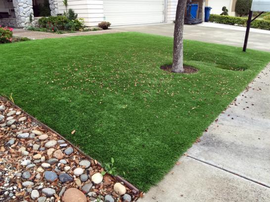 Artificial Grass Photos: Fake Turf Glidden Texas Lawn  Front Yard
