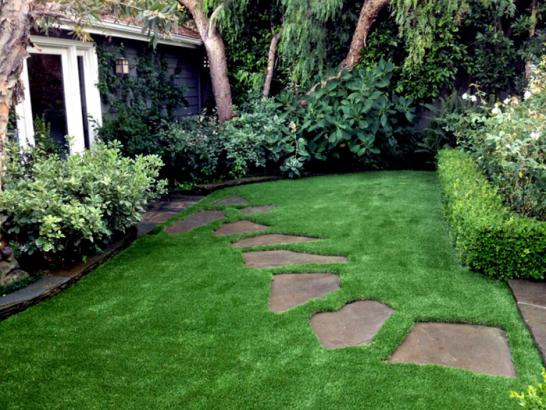 Fake Turf Hackberry Texas  Landscape  Pavers Back Yard artificial grass
