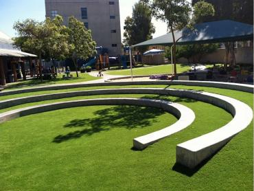 Artificial Grass Photos: Fake Turf Hays Texas Playgrounds  Commercial Landscape