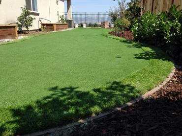 Artificial Grass Photos: Fake Turf Jonestown Texas Lawn  Back Yard