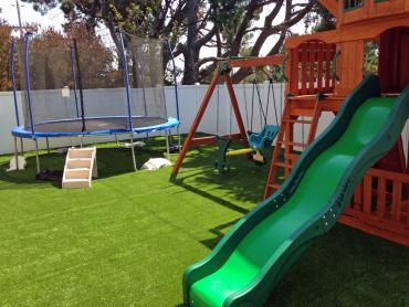 Artificial Grass Photos: Fake Turf Rockdale Texas Playgrounds  Back Yard