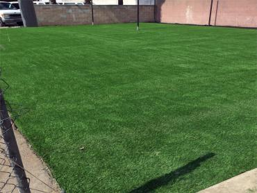 Artificial Grass Photos: Fake Turf Sports Applications Granite Shoals Texas