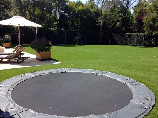 Artificial Grass Photos: Fake Turf Sports Fields Shiner Texas  Swimming Pools Back