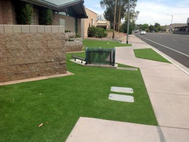 Artificial Grass Photos: Fake Turf Zuehl Texas  Landscape  Front Yard